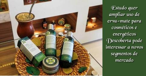 Estudo quer ampliar uso de erva-mate para cosméticos e energéticos