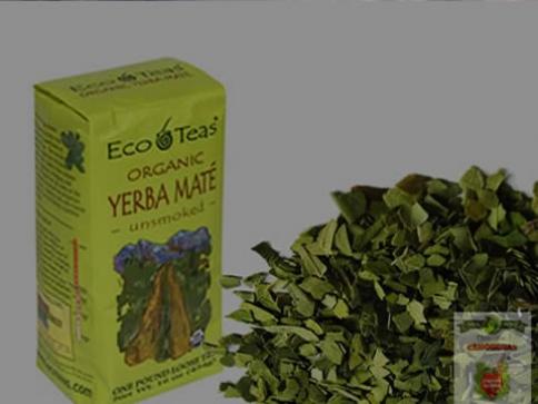 Erva Mate: Chá saudável na América do Norte!