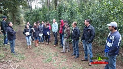 Aula prática na Floresta de Erva Mate.